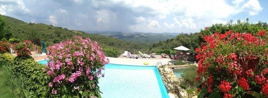 Agriturismo Piaggione di Serravalle: Pool & View