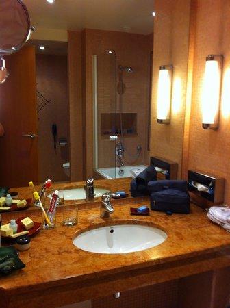 Hotel Atlas Asni : bagno