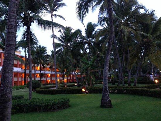 Iberostar Punta Cana: hotel grounds