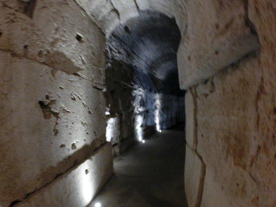 City Wonders: basement view