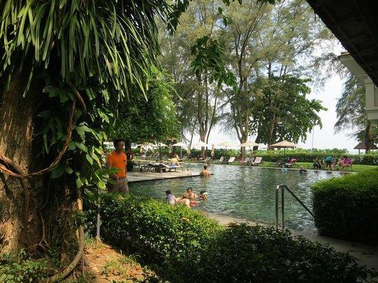 Lone Pine Hotel : Pool area
