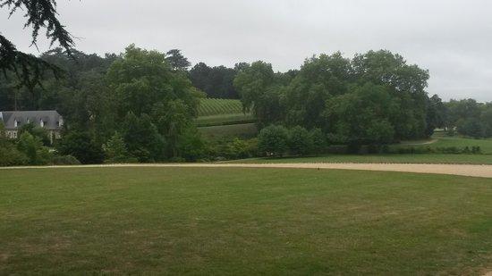 Château de Brissac : parc du chateau