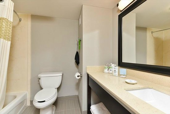 Hampton Inn Laurel (Fort Meade Area) : Guest Room Bathroom