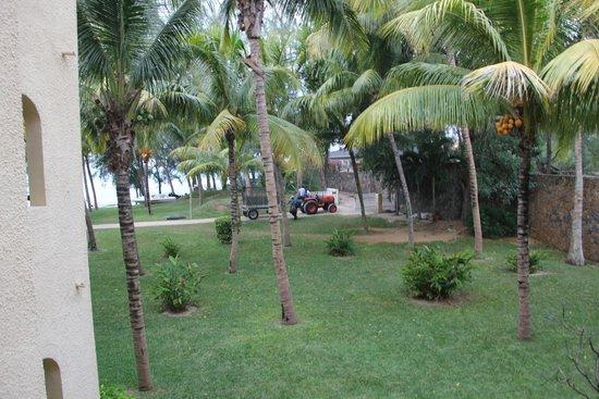 Canonnier Beachcomber Golf Resort & Spa: Graden view camera 206