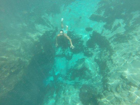 Ichetucknee Springs State Park: tray going deep