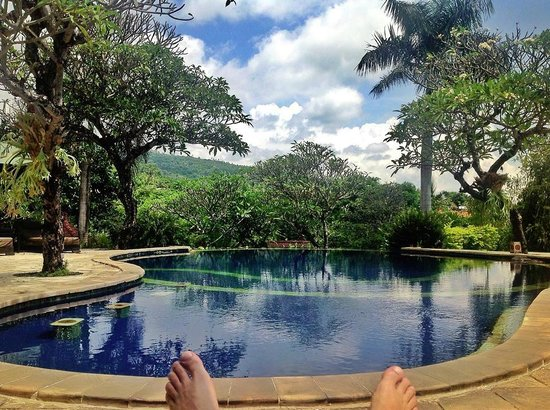 The Damai : compulsory pool shot - utter bliss