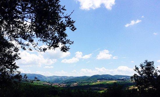 Ancora del Chianti Bed and Breakfast : Greve in Chianti from the Garden