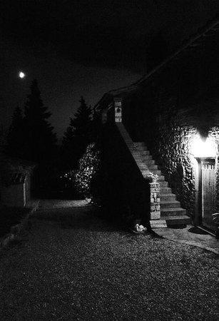 Ancora del Chianti Bed and Breakfast : Night at Ancora