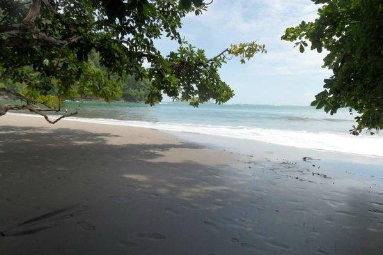 Hotel Costa Verde: Beach