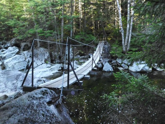 Mount Marcy : Lake Colden suspension bridge
