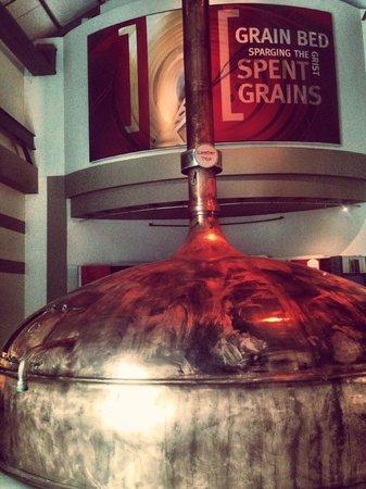 SAB World of Beer: Spent Grains