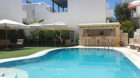 Anna Platanou Hotel: Pool area