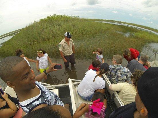 Gator Park: Petite pause dans les Everglades