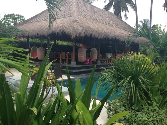 Tigerlillys Boutique Hotel: Pool 2