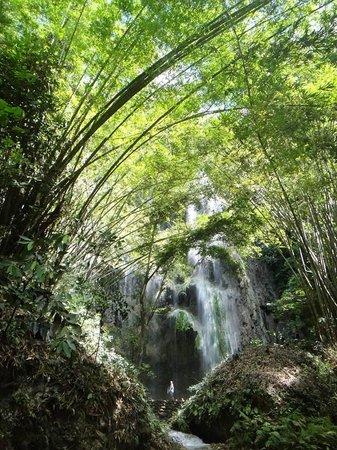 Tumalog Falls : What awaits you
