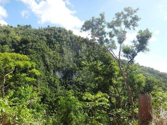 Tumalog Falls : Going there