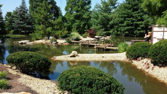 Zen garden picture of mizumoto japanese stroll garden springfield tripadvisor Mizumoto japanese stroll garden