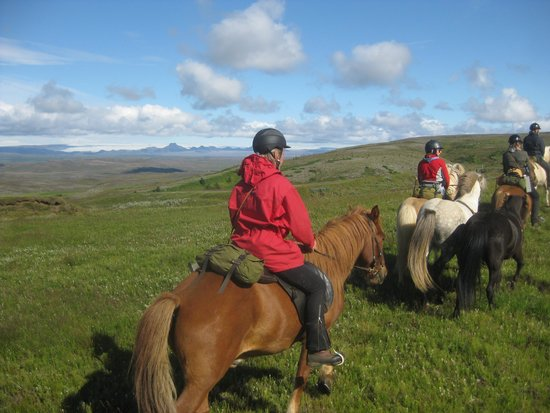 Riding Tours South Iceland : På tur over fjeldet, Langjökull i det fjerne