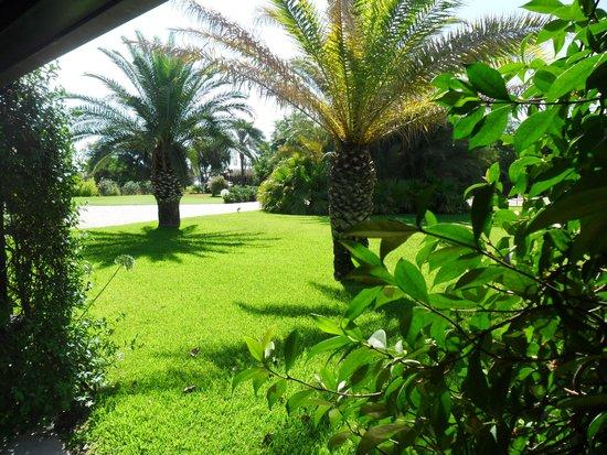 Romano Palace Luxury Hotel : Garden