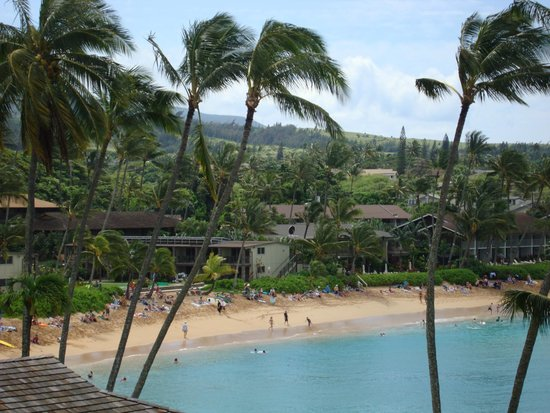 Napili Kai Beach Resort: Nice view from our room!