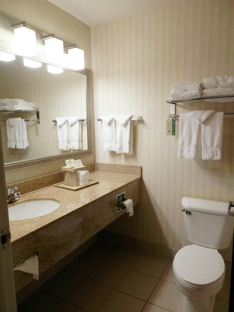 Comfort Suites Linn County Fairgrounds and Expo: bathroom