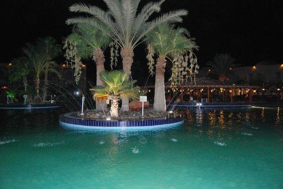 The Desert Rose Resort: Вечером