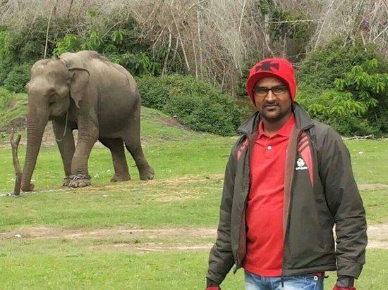 Bandipur National Park and Tiger Reserve: Ramesh Jain at Bandipur National park....