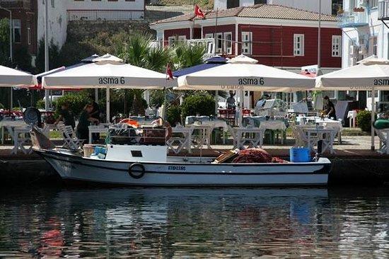 Asma6 Bozcaada Restaurant