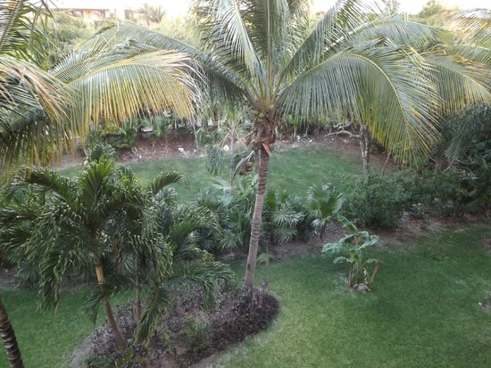 Barcelo Maya Tropical: garden view, not amazing but better than snow