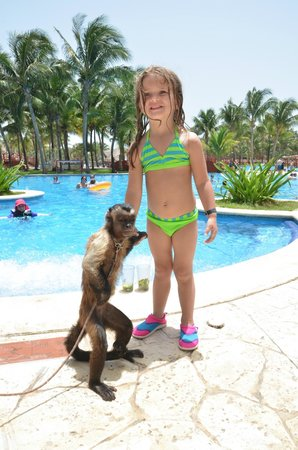 Barcelo Maya Tropical: so many cool animals to take pics with