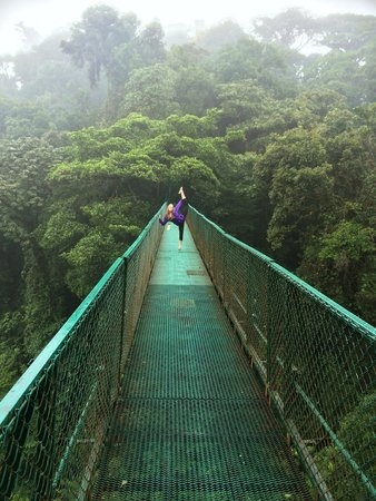 Selvatura Park: Up in the clouds on hanging bridge