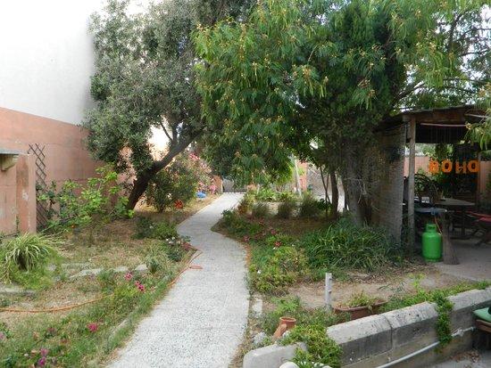 Boho Hostel : Garden
