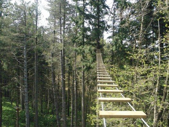 Parco Avventura Sospeso nel Verde
