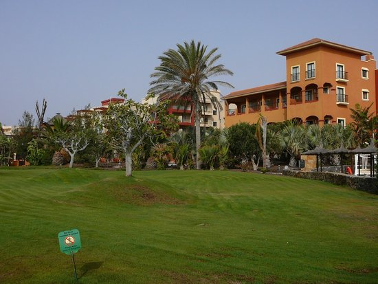 Sheraton Fuerteventura Beach, Golf & Spa Resort: Garten