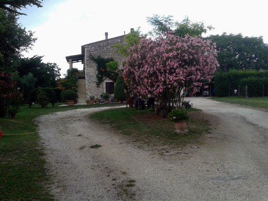 Agriturismo La Pellegrina: L'esterno del casale