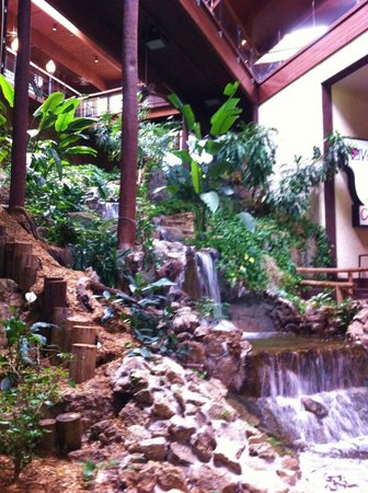 Lodge of  Four Seasons : Atrium waterfall
