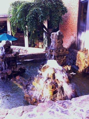 Lodge of  Four Seasons: Garden area
