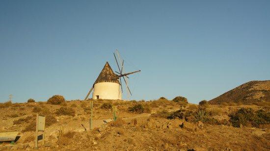 El Parque Natural de Cabo de Gata - Níjar: Cabo de Gata