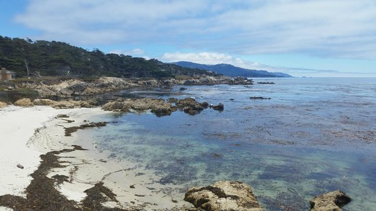 17-Mile Drive : View along the drive