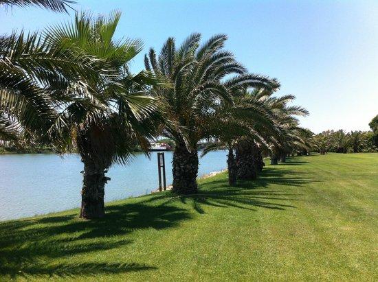 Gloria Serenity Resort: bahçe