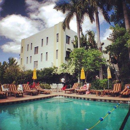 Freehand Miami: Desde la piscina