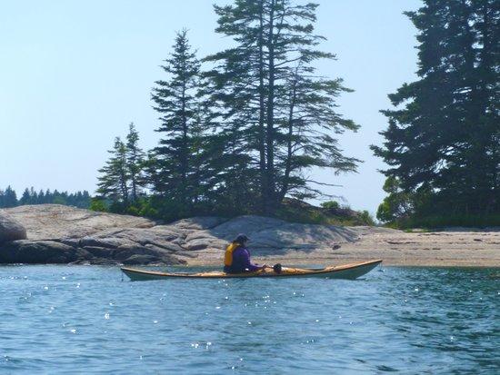 Driftwood Kayak: approaching an island