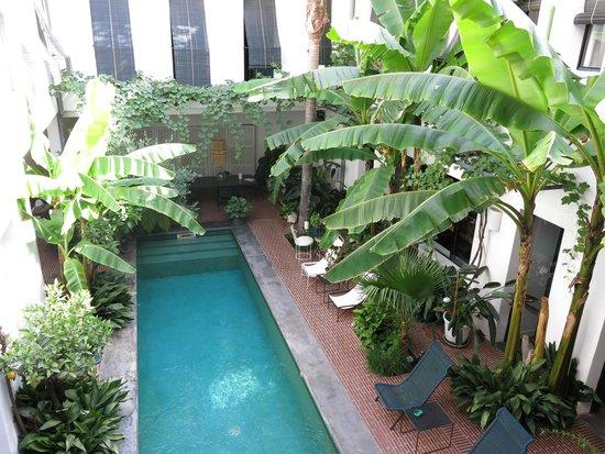 Casa Honore : Der Pool
