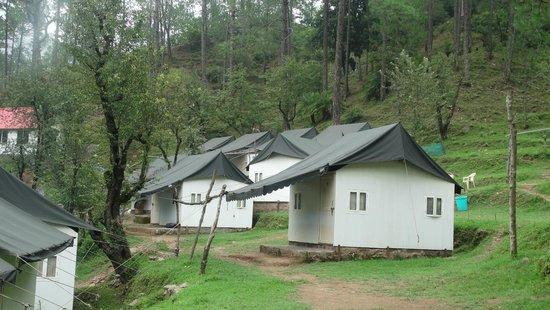Camp Roxx: Tents/Cabins