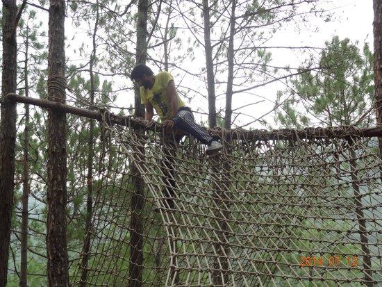 Camp Roxx: Activities