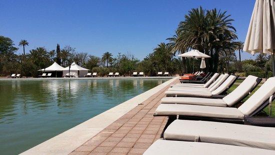 Pullman Marrakech Palmeraie Resort and Spa : Un havre de paix