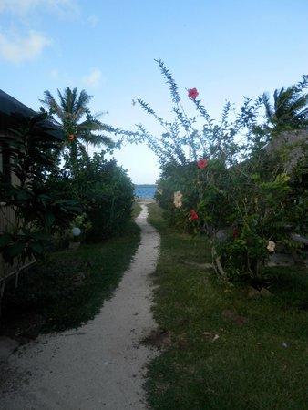 Bora Bora Ecolodge: la pension