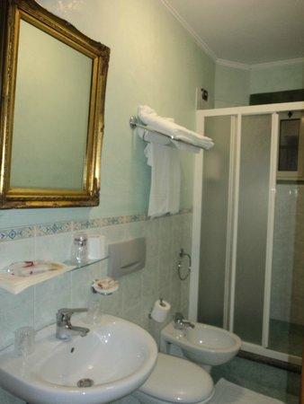Montreal Hotel: Baño