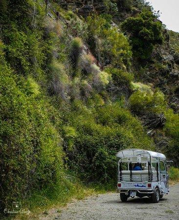 Autotak Granada: Maitena