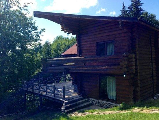 Predeal, Roemenië: Villa#4